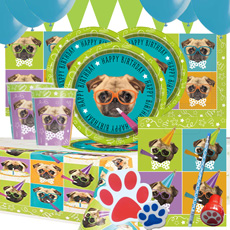 Pug-Party-Kit-3-230